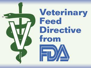 veterinary medicine medical symbol